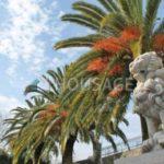 Отель в Греции, Корфу, 26 комнат, 1000 м2